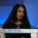 Entrevista-a-Ing.-Susy-Gaton-(2)---Medios-Panorama
